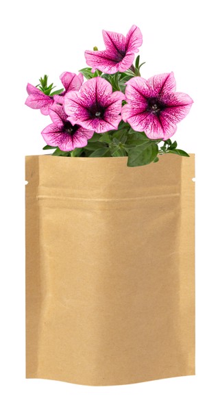 Sada Pro Výsadbu Květin Sober - Béžová