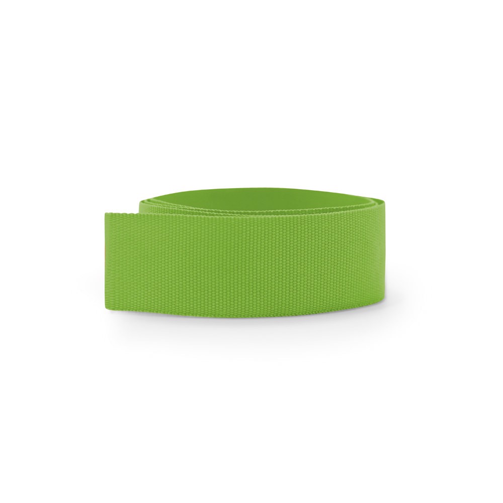 BURTON. Ribbon for hat - Light Green