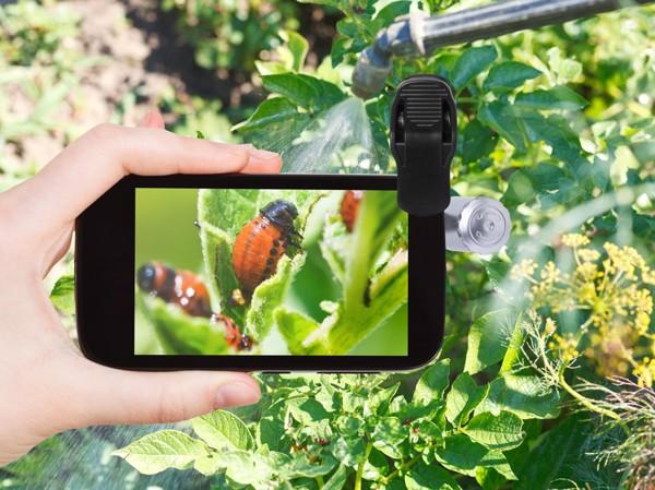 Objektiv za mobilni telefon Dicson 60X - bel/črn