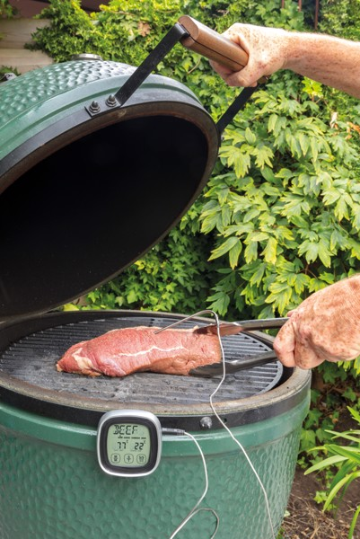 Digitální teploměr na maso