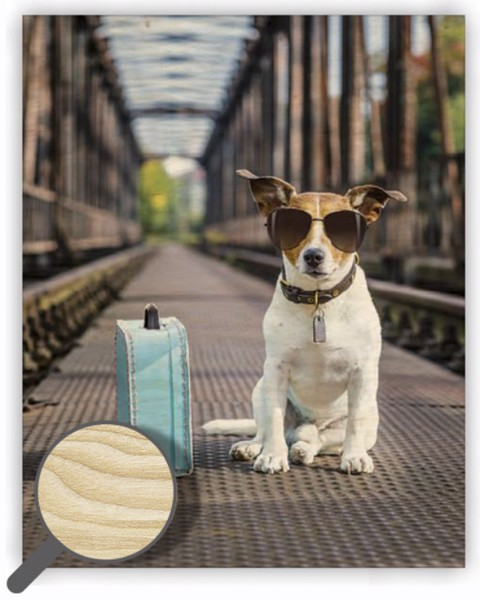 Dřevěný obraz Dog
