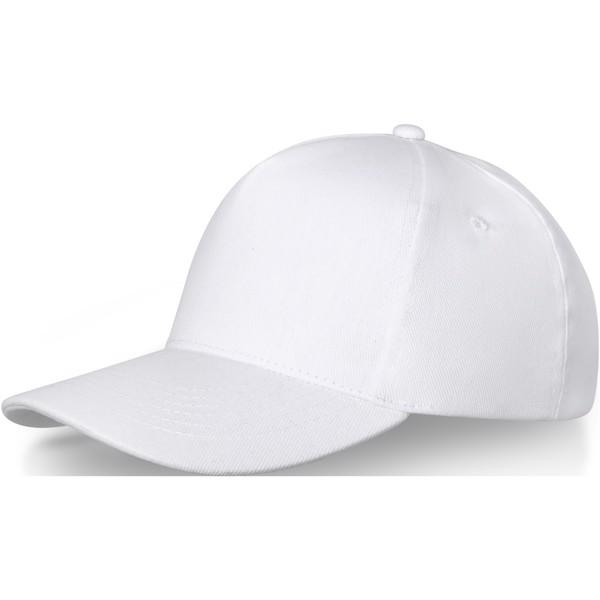 Doyle 5panelová čepice - Bílá