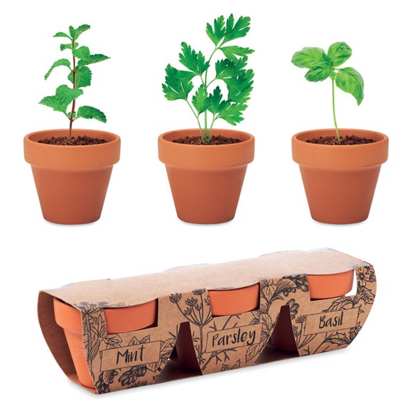 Terracotta 3 herb pot set Flowerpot