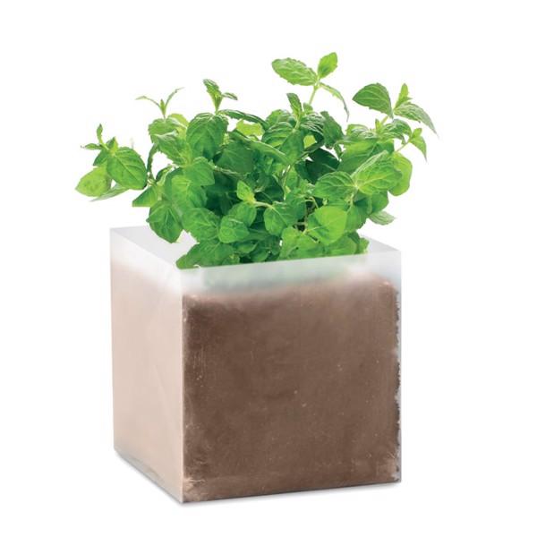 Kompost se semínky Máta Mint