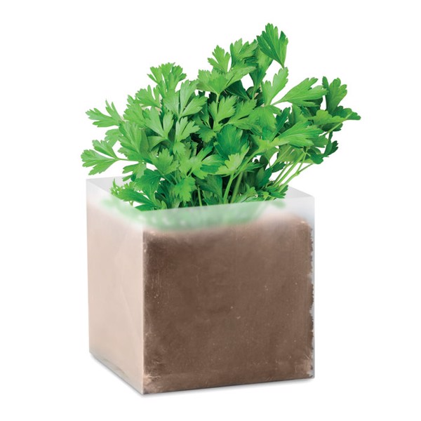 """Compost with seeds """"PARSLEY"""" Parsely"""