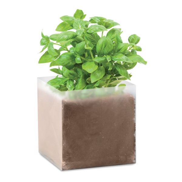 Kompost se semínky Bazalka Basil