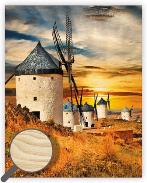 Dřevěný obraz Mills