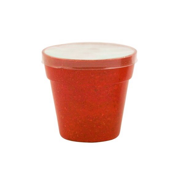 Blumentopf Petunia - Rot