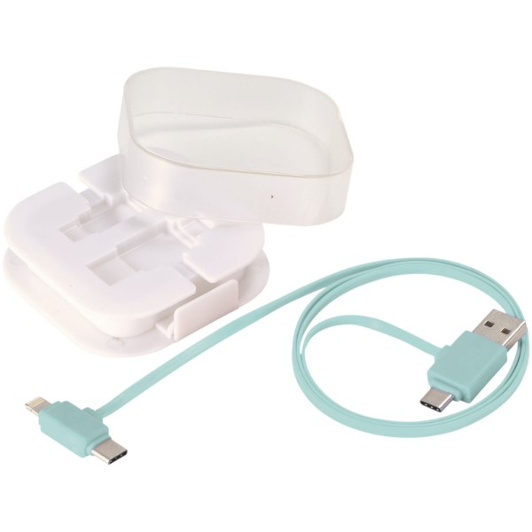 Colour-Pop charging cable with case - Mint