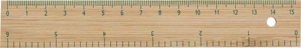 Bamboo ruler