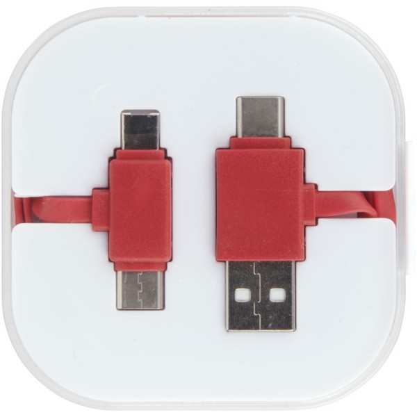 Colour-Pop charging cable with case - Red